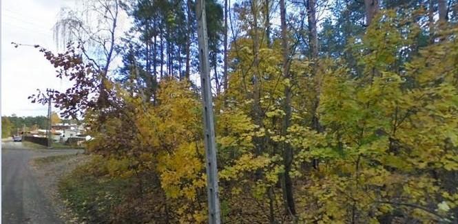 Działka leśna z prawem budowy Warszawa, ul. Lokalna 425 PLN/ m2 leśna z prawem budowy