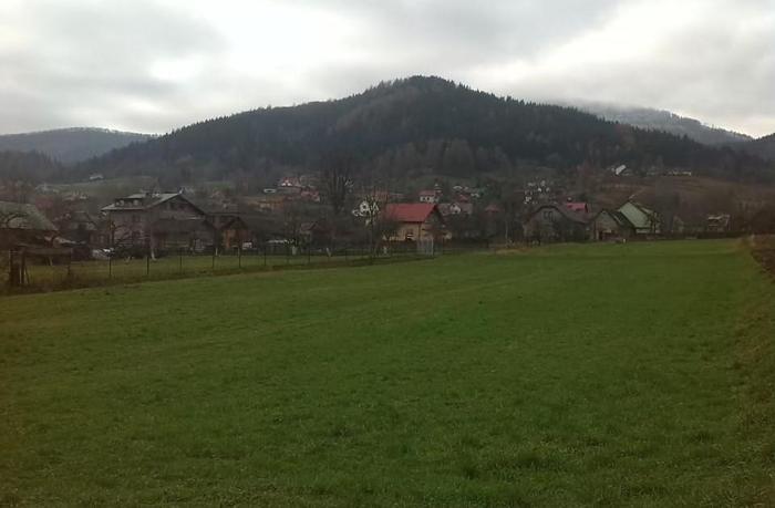 KRAKÓW okolice, gmina Liszki - sprzedam 80a lasu (60 + 20) i 22a pola ornego