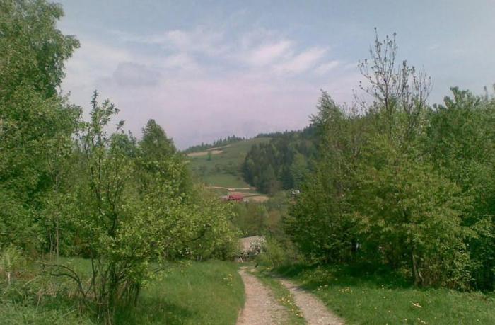 Sprzedam działkę 14,66 ara, WZ na terenie Krakowa. Tel. 603-93-20-93.